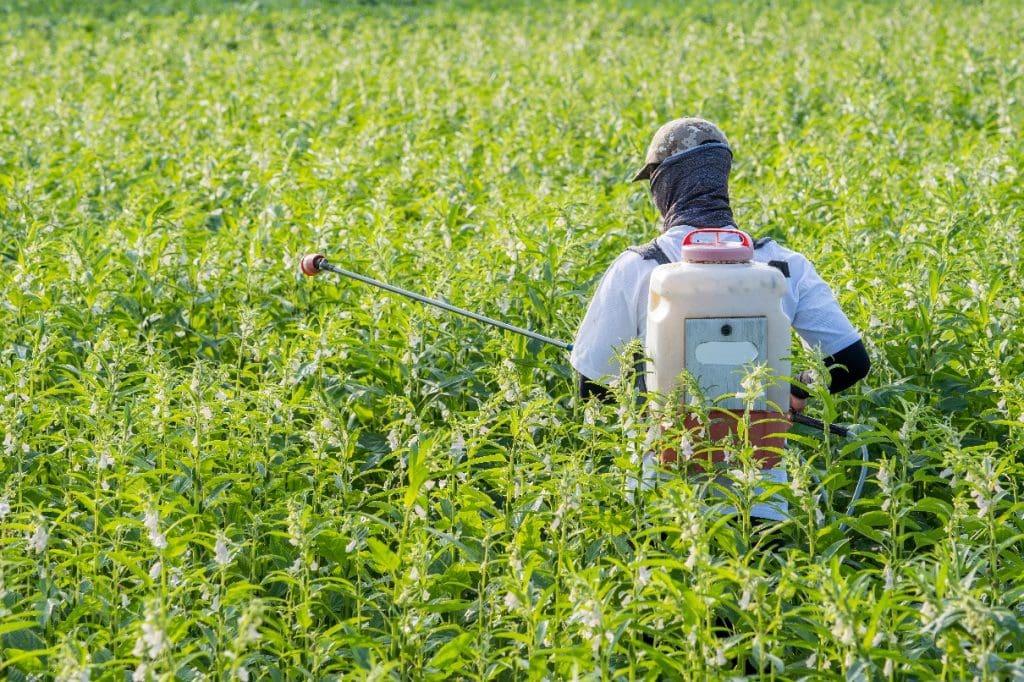 BHP w rolnictwie – co koniecznie musisz wiedzieć