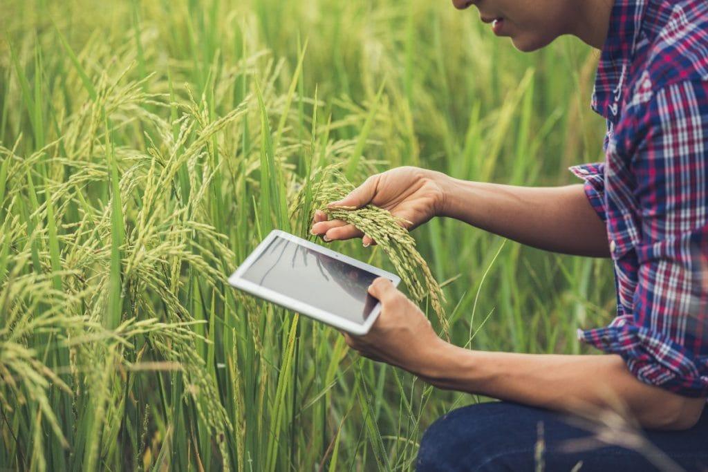 Rolnictwo 4.0 – udogodnienia dla gospodarstwa