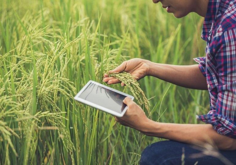 Rolnictwo 4.0 - udogodnienia dla gospodarstwa
